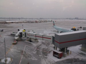 pearson airport christmas 2013