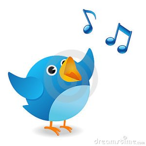 twitter-bird-9774951