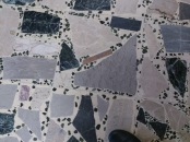 original terrazo flooring