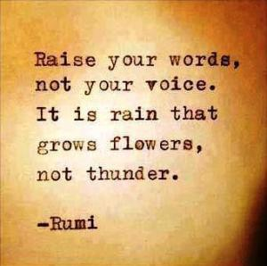 raise-your-words-not-your-voice-rumi