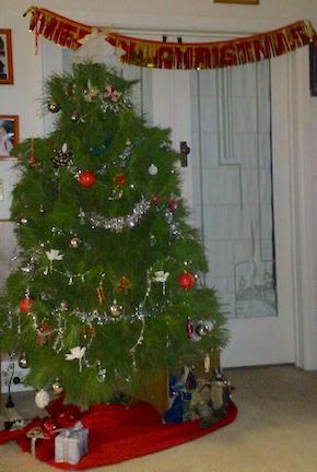 xmas tree 2015.jpg