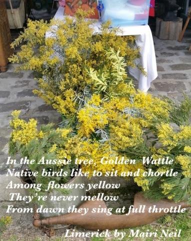 wattle poem 2.jpg