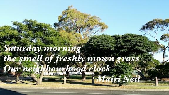 freshly mown grass.jpg