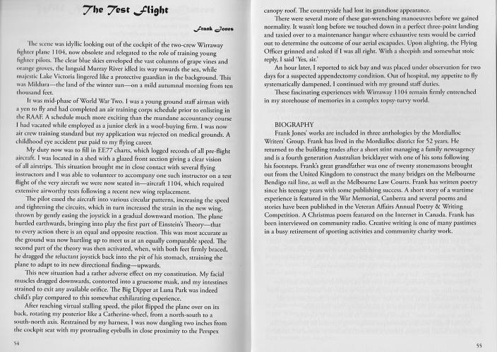 short story The Test Flight.jpeg