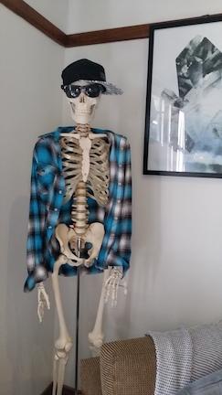 skeleton in beachside osteo copy.jpg