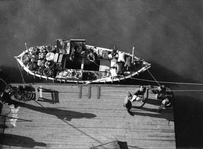 bum boats Port Said.jpg