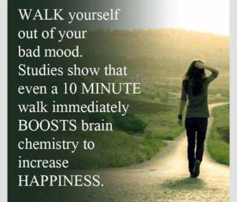 walking and happiness.jpg