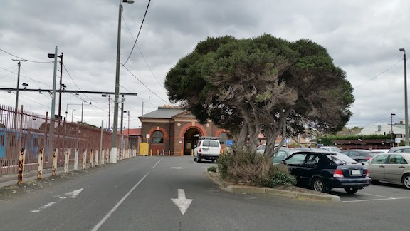 trees in brighton beach station carpark.jpg