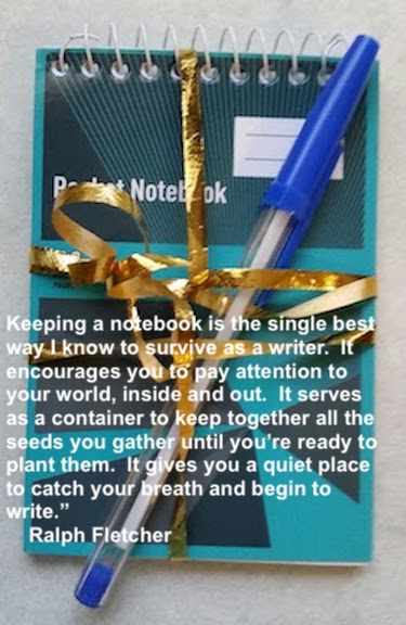 notebook and pen copy.jpg