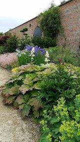 walled garden bangor