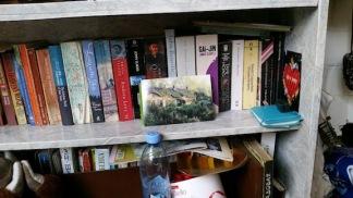 bookshelf homestay irkutsk