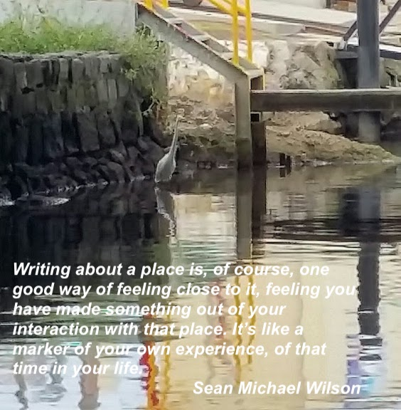 a heron Mordi Creek.jpg
