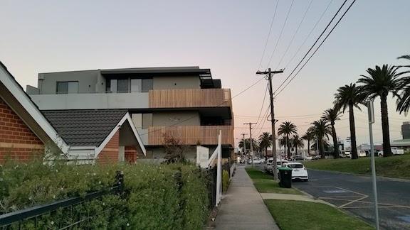 palm trees by neighbourhood house.jpg