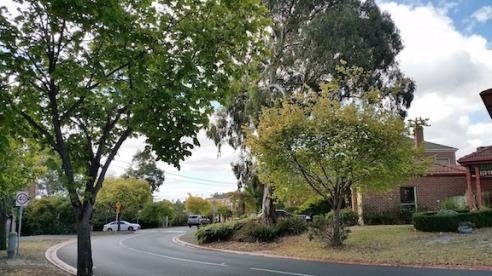 suburban street kew