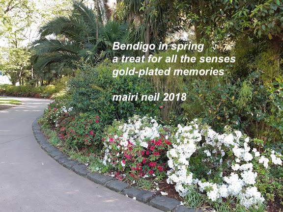 spring blooms bendigo.jpg