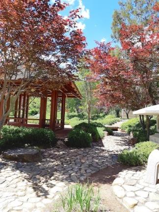 japanese garden nara Park