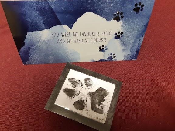 card from vet