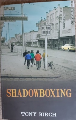 shadowboxing front cover
