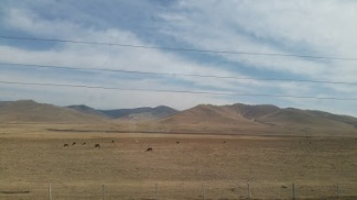 mongolian countryside 1