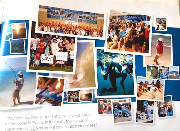 collage of support photos