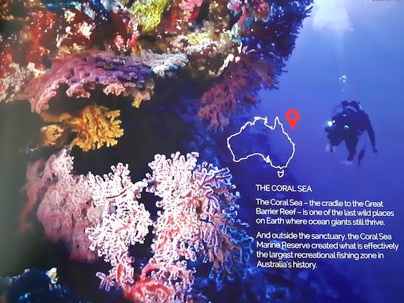 coral sea zone