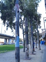 indigenous poles close up 3