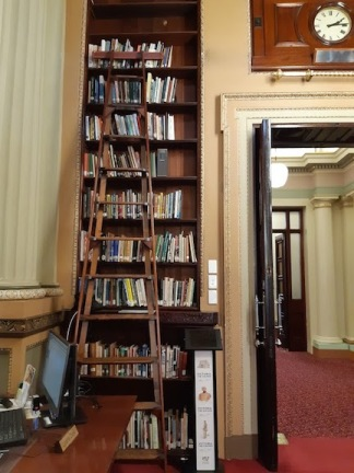ladders and shelves library