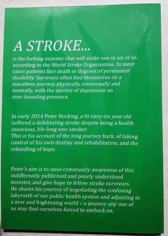 diary of a stroke blurb