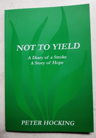 diary of a stroke front cover