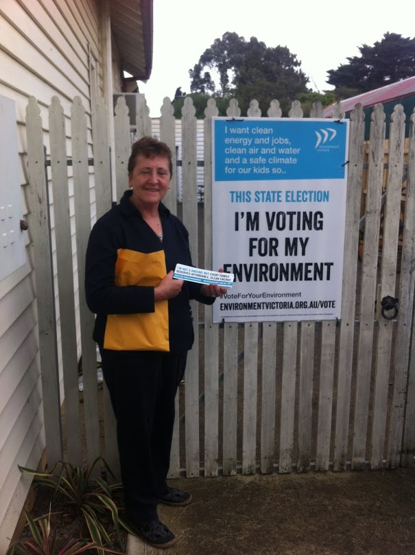 voting for the environment