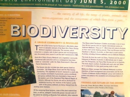 biodiversity in kingston 2000
