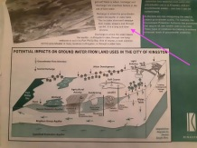 groundwater use kingston