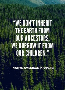 native american proverb -FB