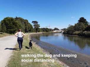 walking the dog by Mordi Creek