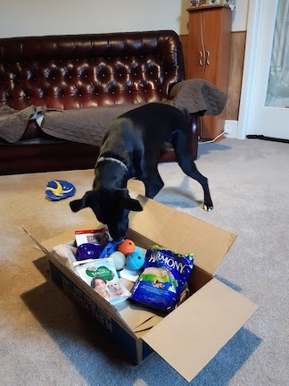 Josie and her parcel
