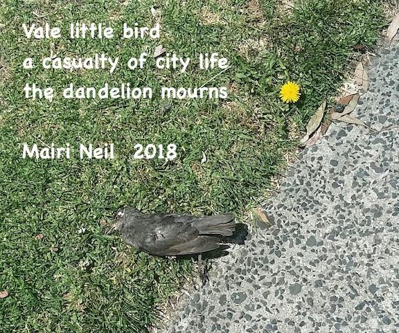 dead bird and dandelion